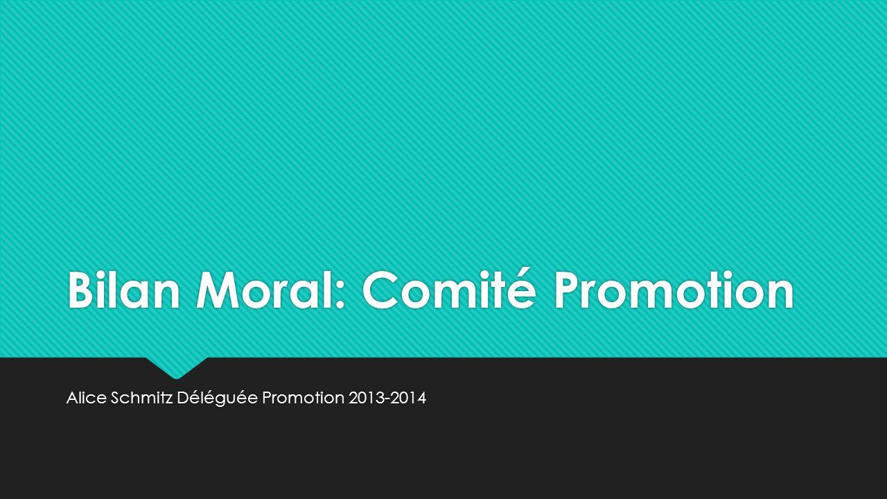Bilan Moral: Comité Promotion Alice Schmitz Déléguée Promotion 2013-2014