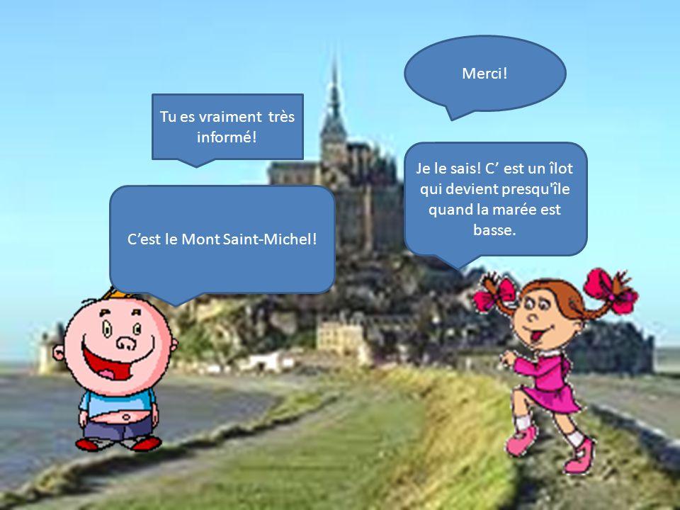 Cest le Mont Saint-Michel.Je le sais.