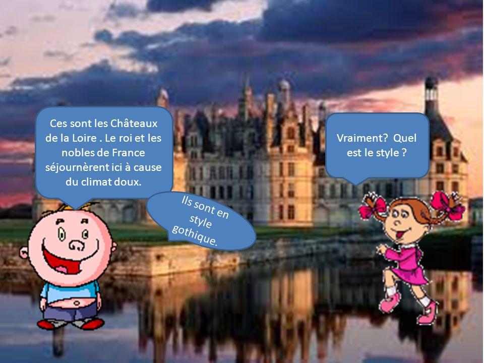 Ces sont les Châteaux de la Loire.