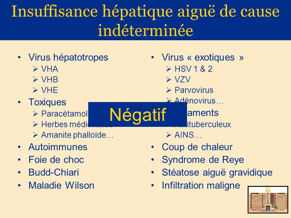 Insuffisance hépatique aiguë de cause indéterminée Virus hépatotropes VHA VHB VHE Toxiques Paracétamol Herbes médicinales Amanite phalloïde… Autoimmun