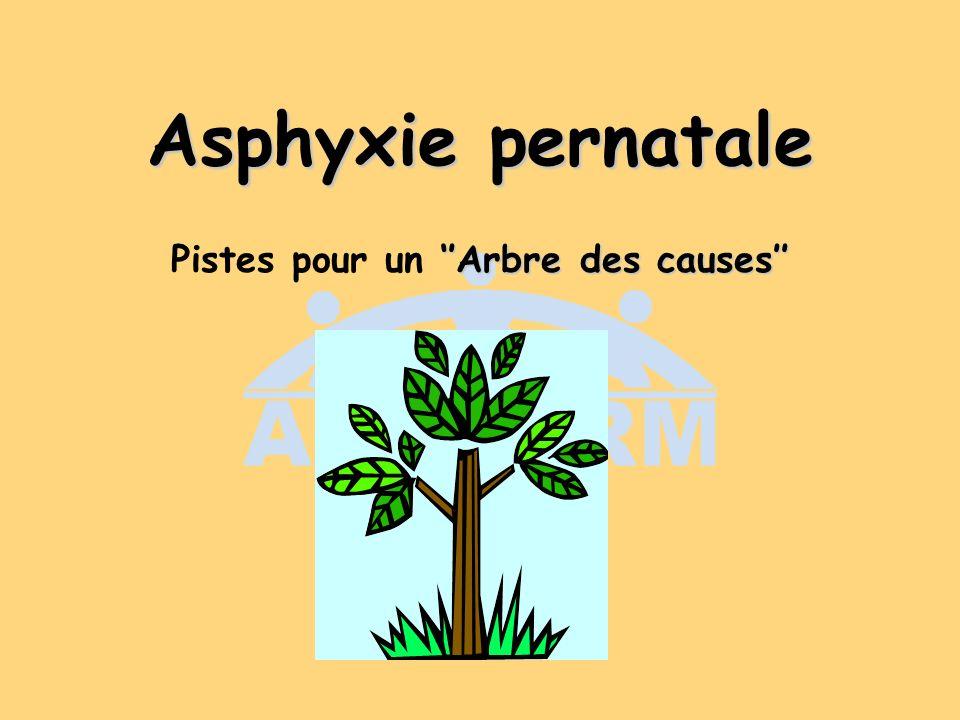 Asphyxie pernatale Arbre des causes Pistes pour un Arbre des causes