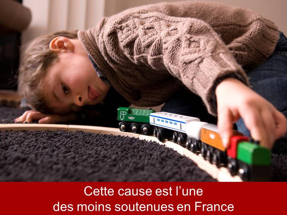 * Sondage OpinionWay mars 2010 Cette cause est lune des moins soutenues en France