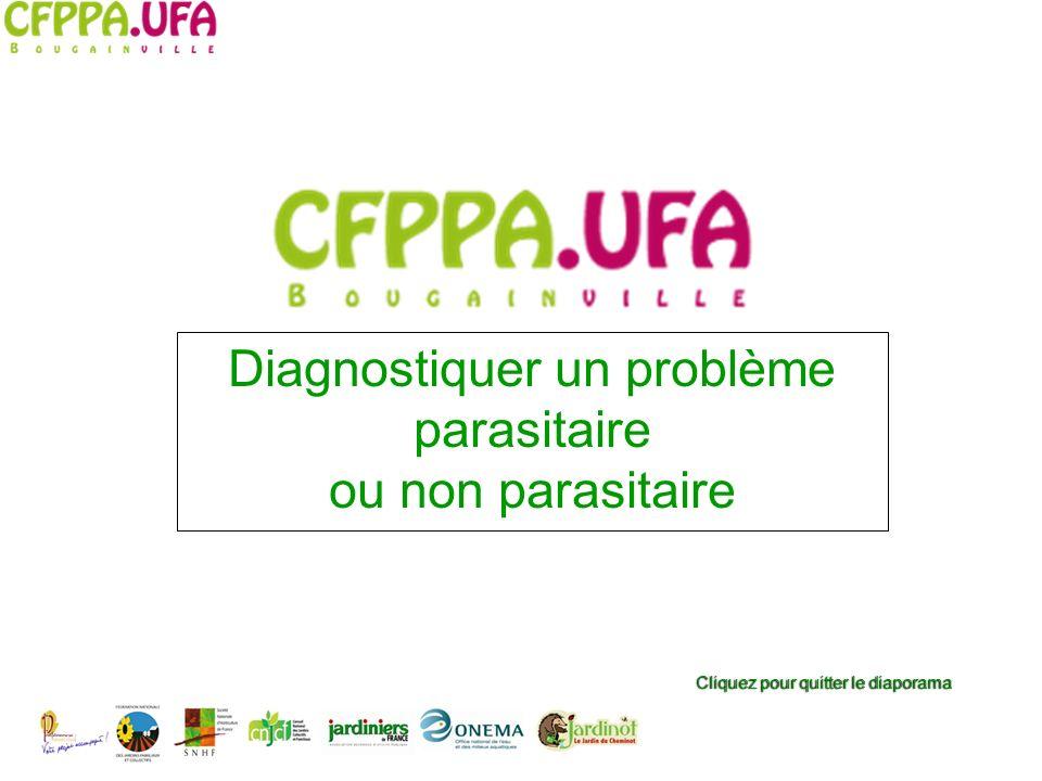 Cliquez pour quitter le diaporamaCliquez pour quitter le diaporama Diagnostiquer un problème parasitaire ou non parasitaire