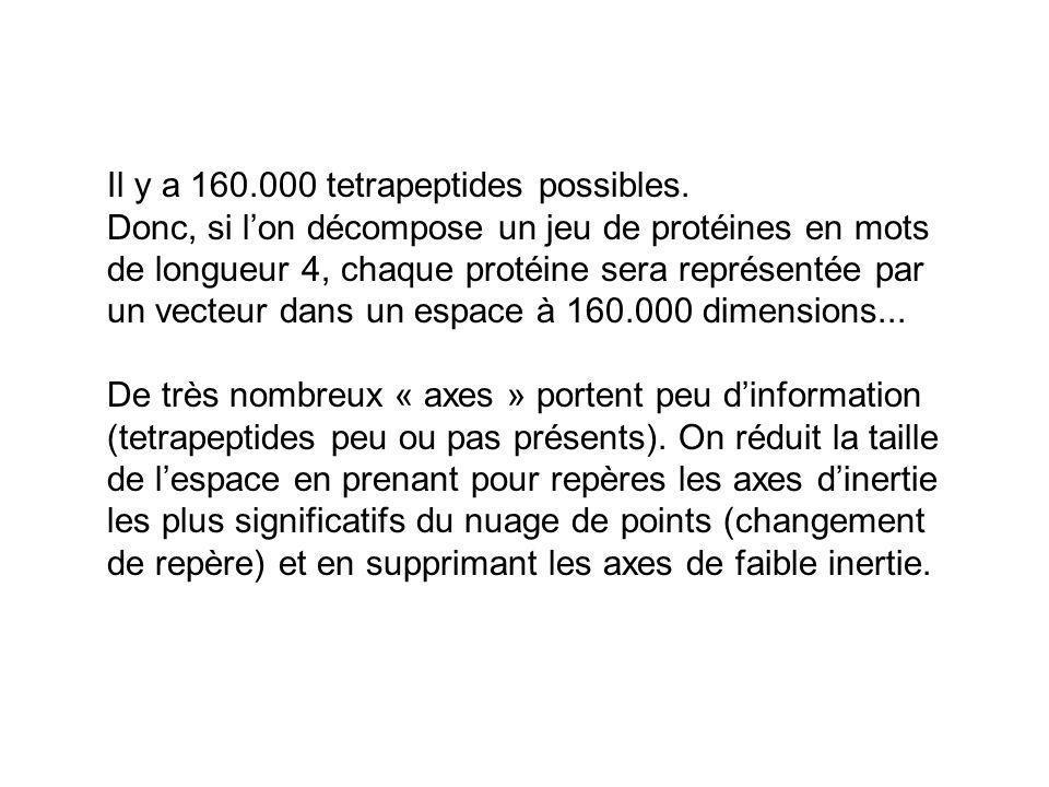 Il y a 160.000 tetrapeptides possibles. Donc, si lon décompose un jeu de protéines en mots de longueur 4, chaque protéine sera représentée par un vect