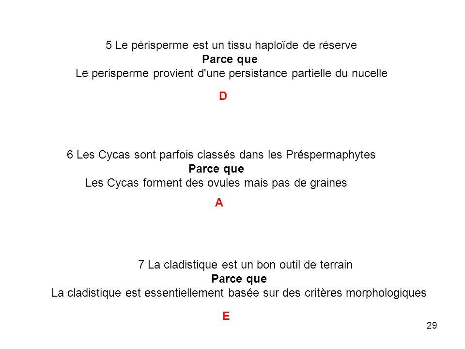 29 6 Les Cycas sont parfois classés dans les Préspermaphytes Parce que Les Cycas forment des ovules mais pas de graines 5 Le périsperme est un tissu h