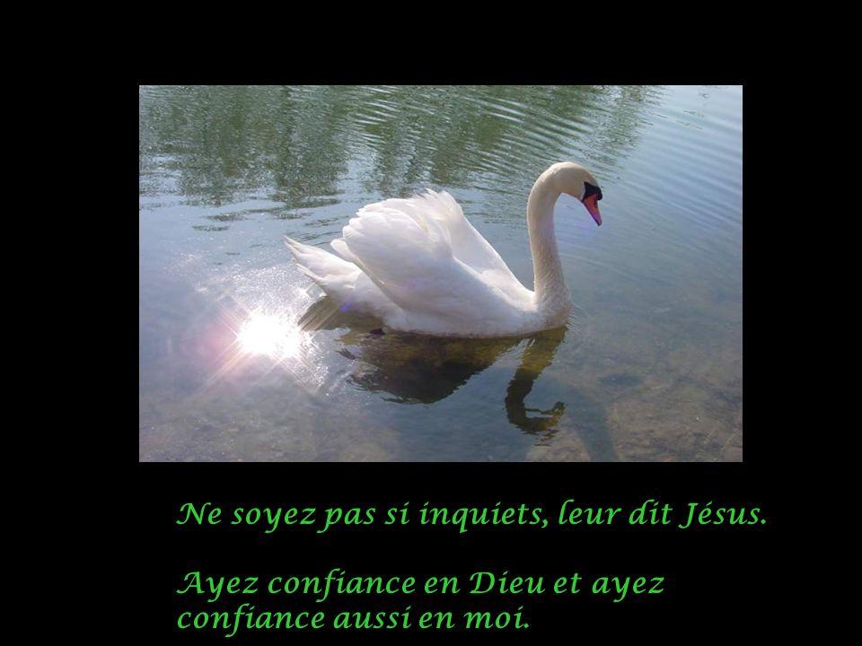 Ne soyez pas si inquiets, leur dit Jésus. Ayez confiance en Dieu et ayez confiance aussi en moi.