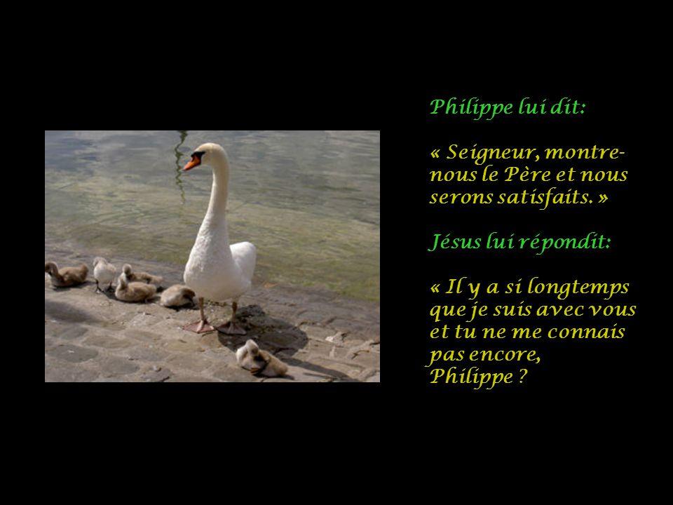 Philippe lui dit: « Seigneur, montre- nous le Père et nous serons satisfaits.