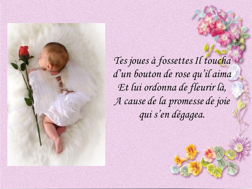 Tes joues à fossettes Il toucha dun bouton de rose quil aima Et lui ordonna de fleurir là, A cause de la promesse de joie qui sen dégagea.