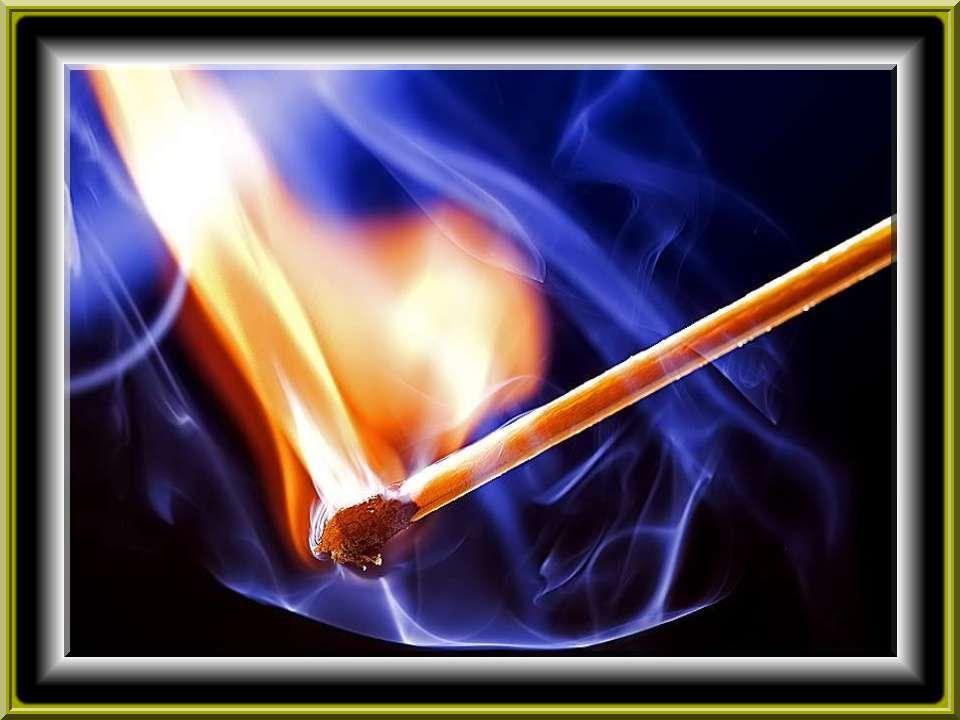 Qu'on brûle ce qui restera de moi et qu'on répande mes cendres à tous vents pour aider les fleurs à pousser.