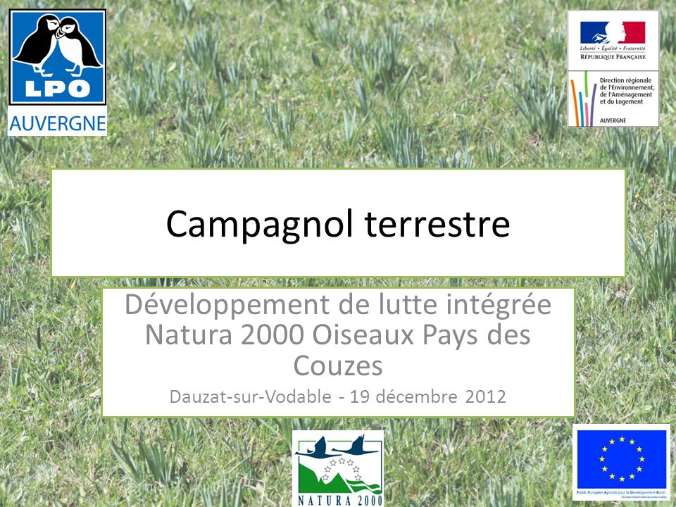 Campagnol terrestre Développement de lutte intégrée Natura 2000 Oiseaux Pays des Couzes Dauzat-sur-Vodable - 19 décembre 2012