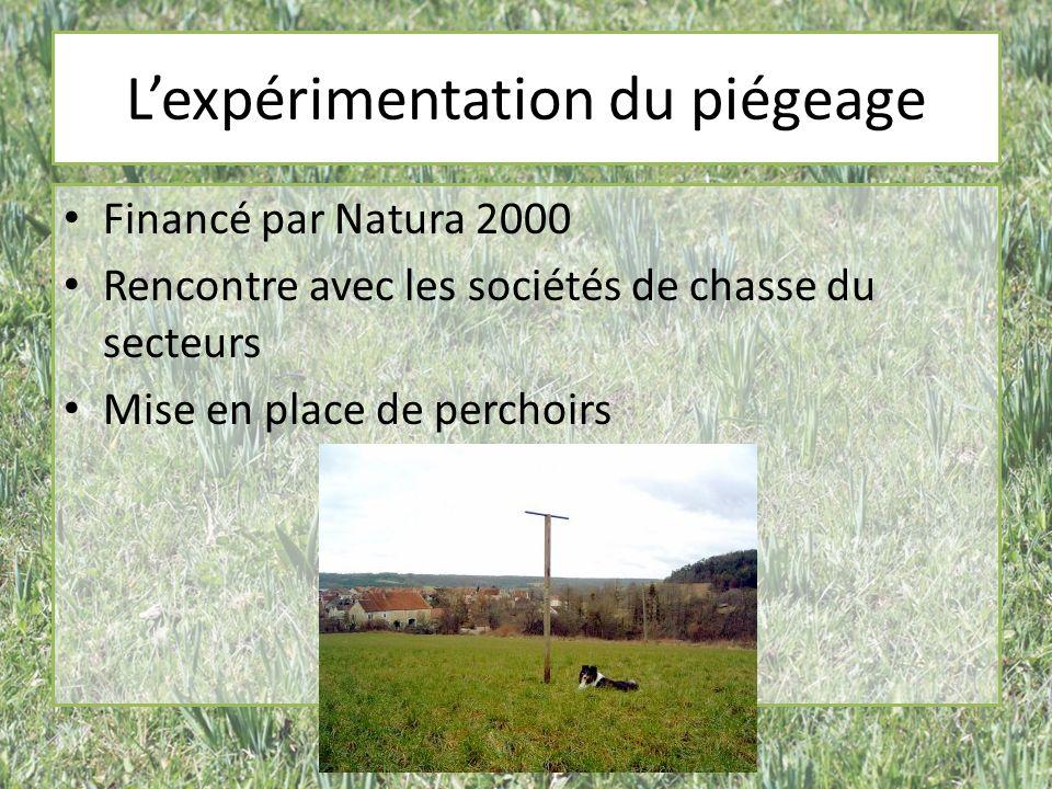 Lexpérimentation du piégeage Financé par Natura 2000 Rencontre avec les sociétés de chasse du secteurs Mise en place de perchoirs
