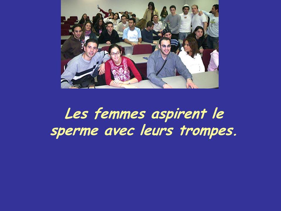Les femmes aussi ont du sperme qui se mélange au sperme de l homme pour faire une réaction.