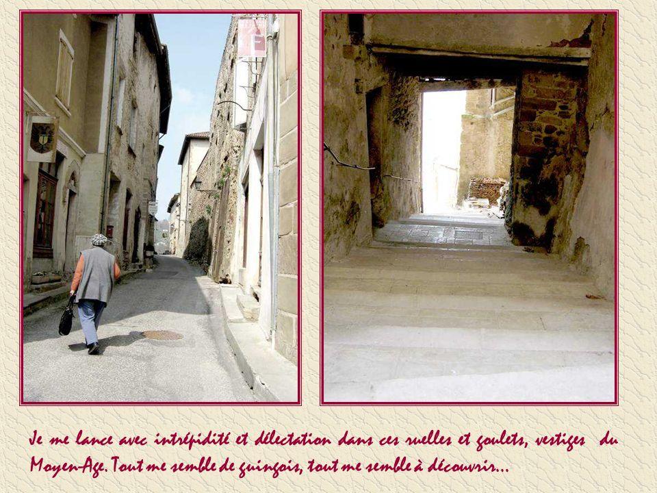Nous sommes en Isère, aux frontières de la Drôme, dans le beau village moyenâgeux de Saint Antoine de lAbbaye. Haut lieu de pèlerinage pendant des siè