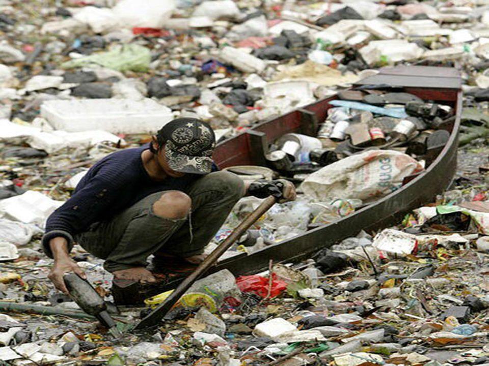 Comment voulez-vous vivre sur la terre … si on la détruit ainsi ?