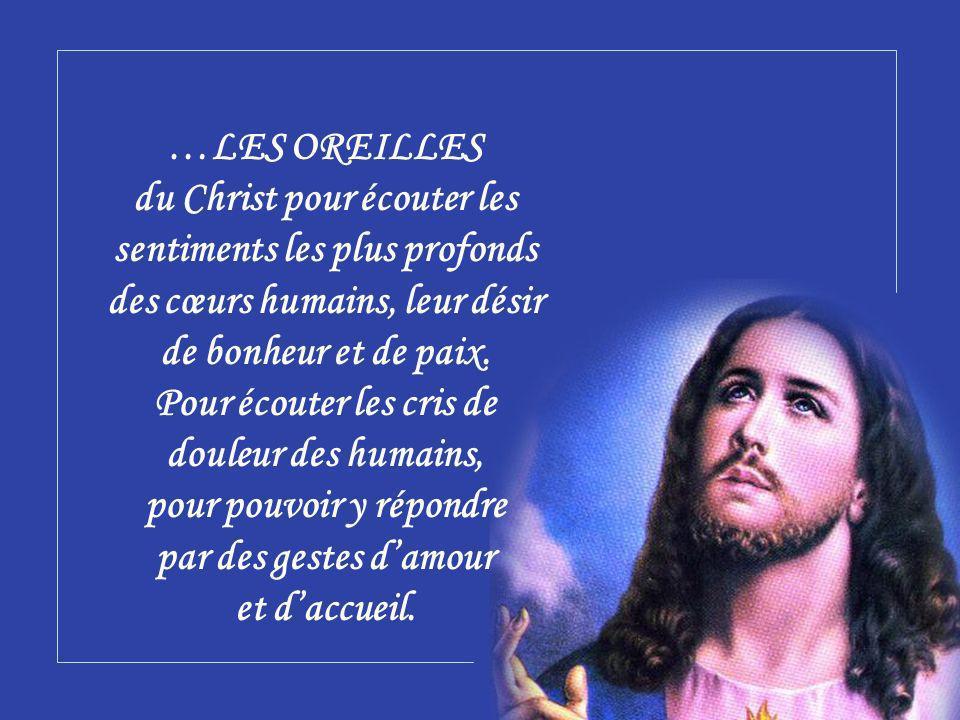 …LES OREILLES du Christ pour écouter les sentiments les plus profonds des cœurs humains, leur désir de bonheur et de paix.
