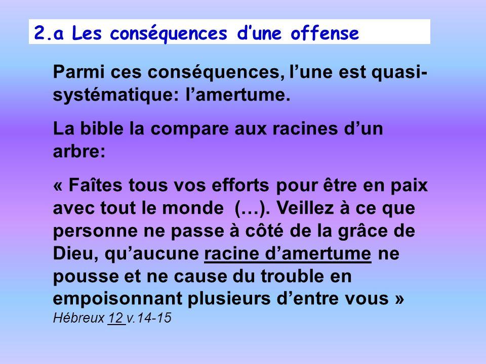 2.a Les conséquences dune offense Parmi ces conséquences, lune est quasi- systématique: lamertume. La bible la compare aux racines dun arbre: « Faîtes