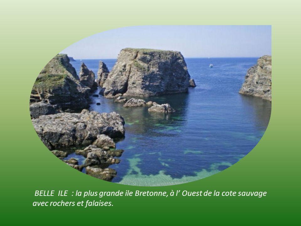 Ile de GROIX ; Réserve naturelle géologique baptisée François le Bail avec le Glauphane bleu pierre striée très rare, datant de millions dannées.