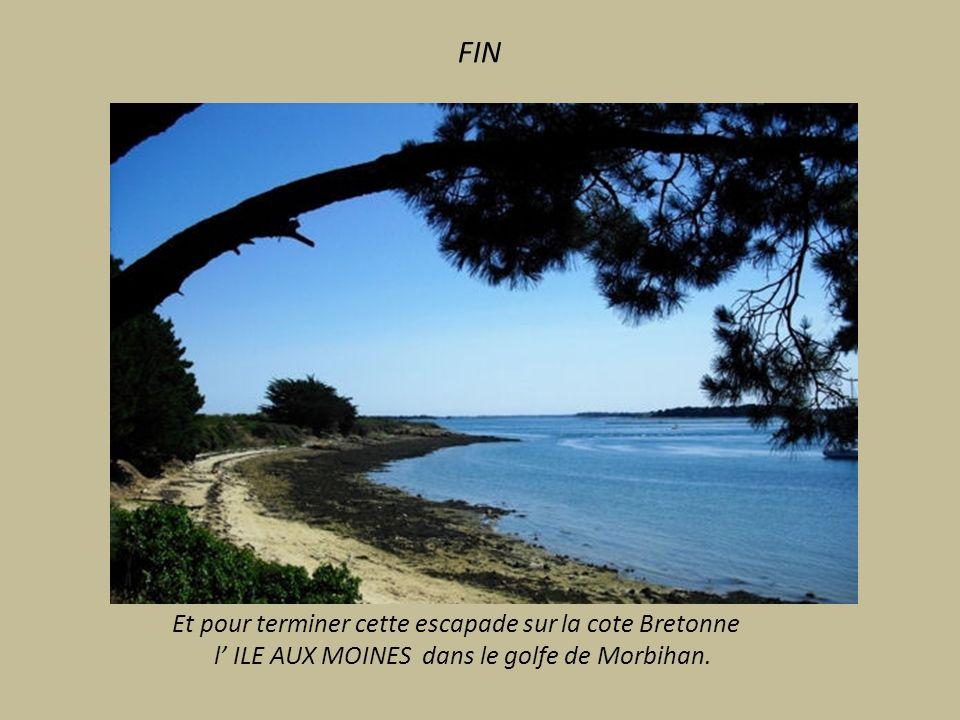 ILE D ARZ Au large de Vannes. lile des Capitaines Comporte 9 ilots. Moulin à marée de Berno (16°siècle) et sa digue.