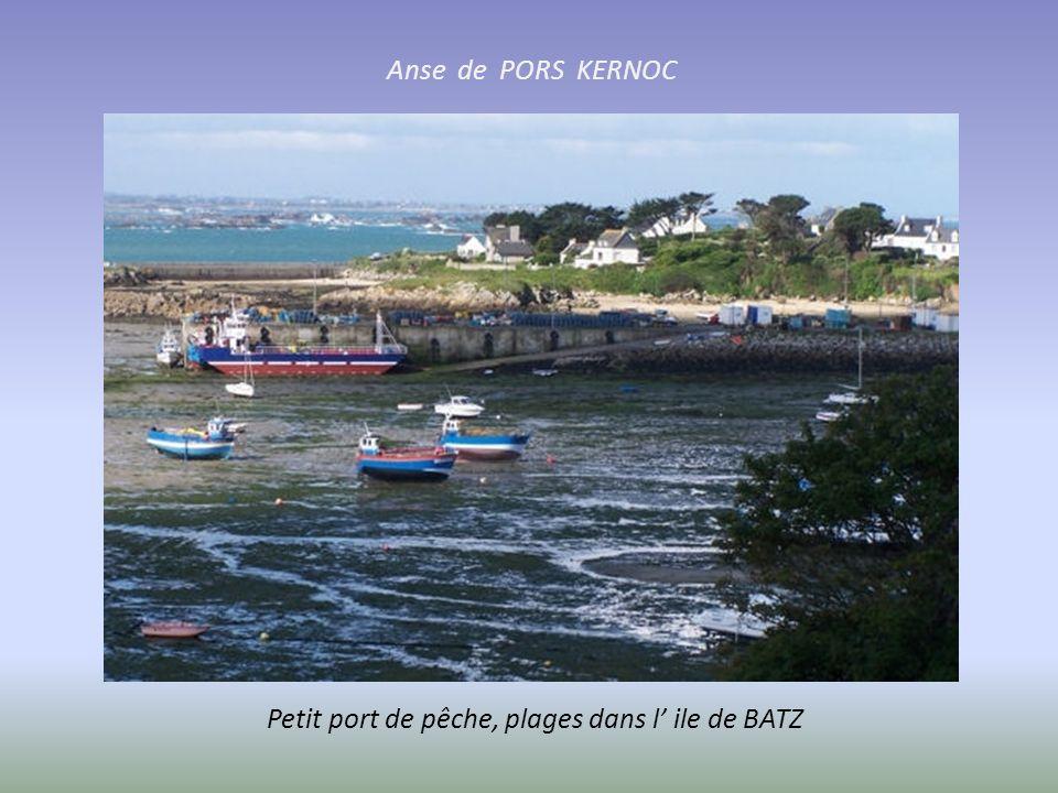ILE DE BATZ Au large de Roscoff. espace protégé, nombreuses algues et oiseaux (héron. aigrette. hirondelle de mer)