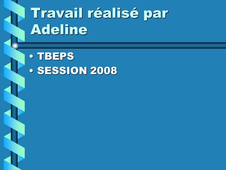 Travail réalisé par Adeline TBEPSTBEPS SESSION 2008SESSION 2008