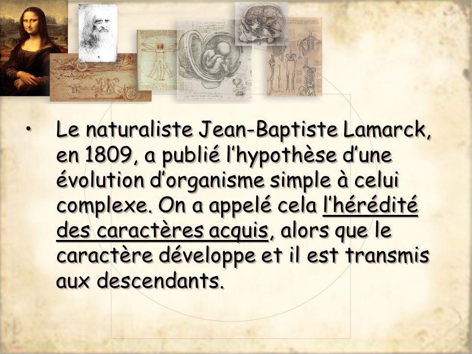 Le naturaliste Jean-Baptiste Lamarck, en 1809, a publié lhypothèse dune évolution dorganisme simple à celui complexe. On a appelé cela lhérédité des c
