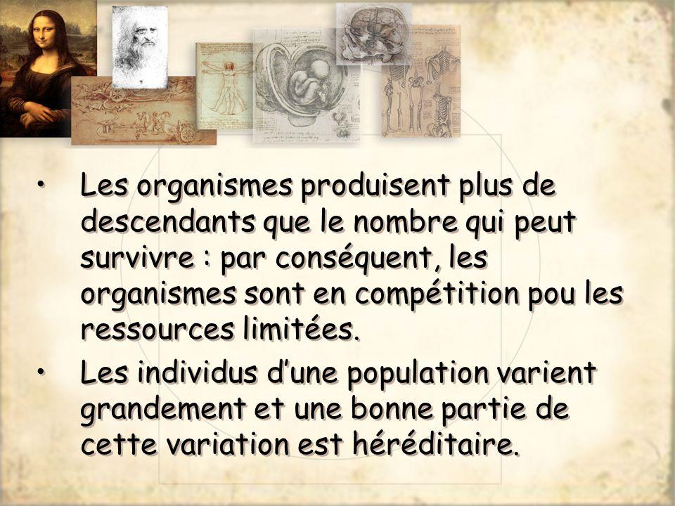 Les organismes produisent plus de descendants que le nombre qui peut survivre : par conséquent, les organismes sont en compétition pou les ressources
