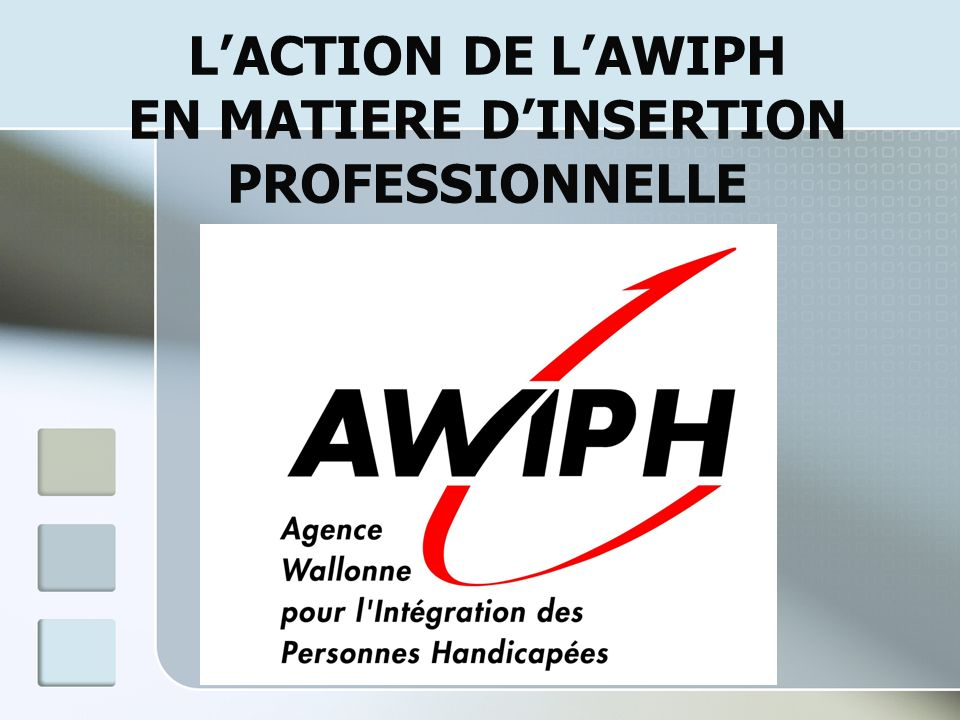 LACTION DE LAWIPH EN MATIERE DINSERTION PROFESSIONNELLE