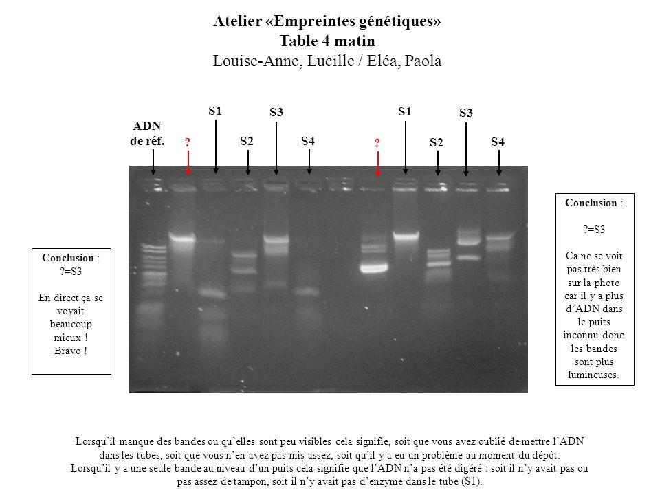 S2 Atelier «Empreintes génétiques» Table 4 matin Louise-Anne, Lucille / Eléa, Paola Lorsquil manque des bandes ou quelles sont peu visibles cela signi