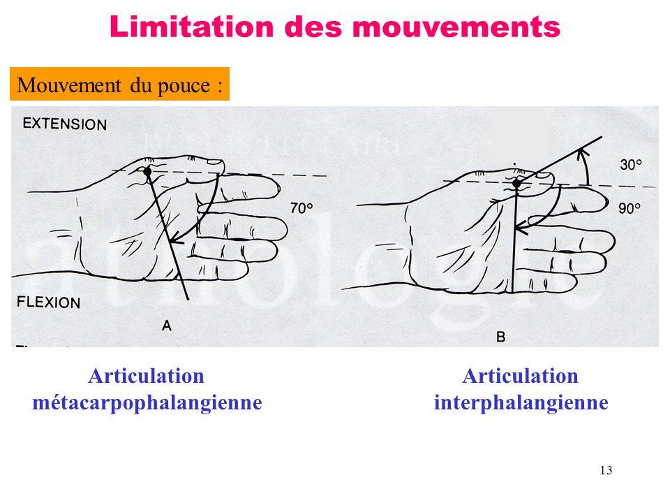 13 Mouvement du pouce : Articulation métacarpophalangienne Limitation des mouvements Articulation interphalangienne
