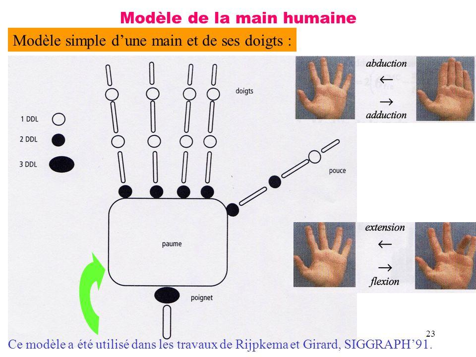 23 Modèle de la main humaine Modèle simple dune main et de ses doigts : Ce modèle a été utilisé dans les travaux de Rijpkema et Girard, SIGGRAPH91.
