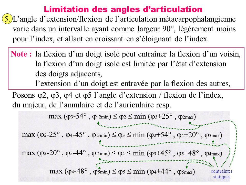 31 Limitation des angles darticulation 5. Langle dextension/flexion de larticulation métacarpophalangienne varie dans un intervalle ayant comme largeu