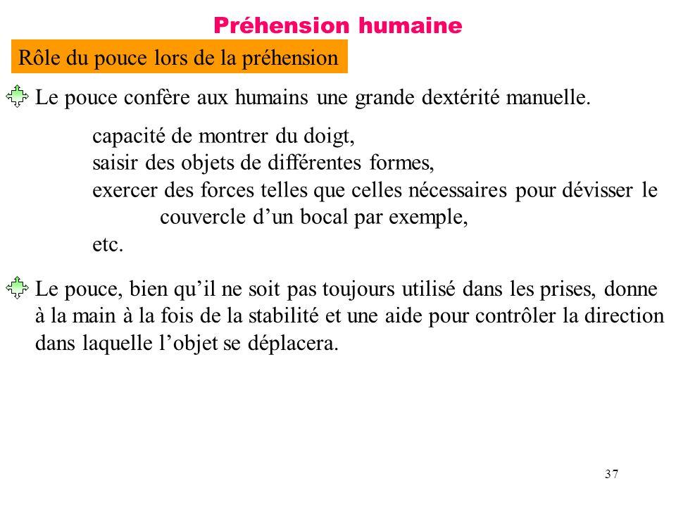 37 Préhension humaine capacité de montrer du doigt, saisir des objets de différentes formes, exercer des forces telles que celles nécessaires pour dév