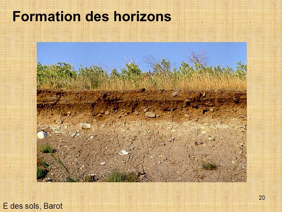 20 Formation des horizons E des sols, Barot