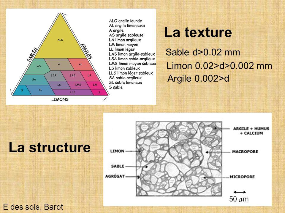 23 La texture E des sols, Barot La structure Sable d>0.02 mm Limon 0.02>d>0.002 mm Argile 0.002>d 50 m