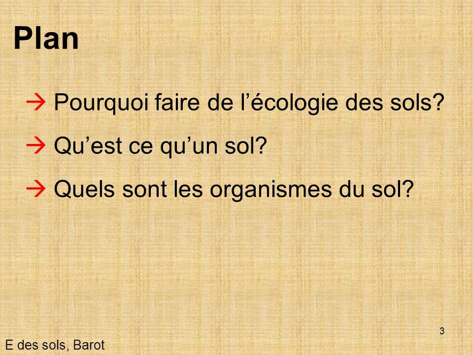 24 Importance De la biologie!!.