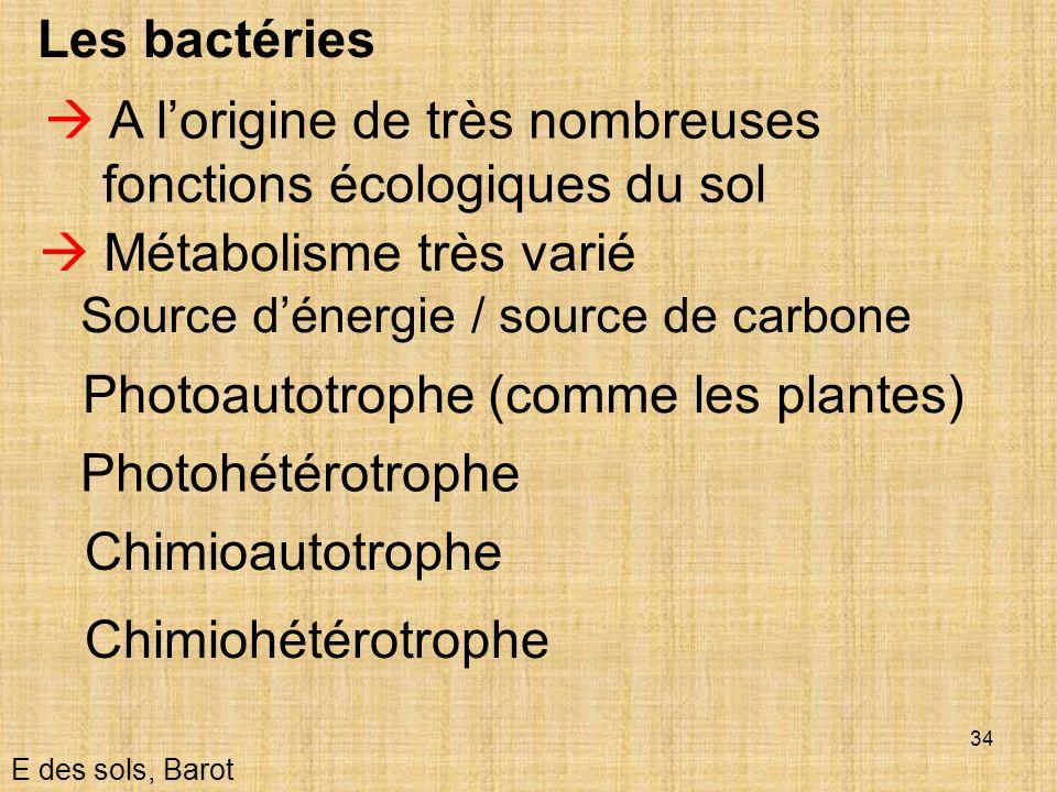 34 Les bactéries Métabolisme très varié Source dénergie / source de carbone E des sols, Barot A lorigine de très nombreuses fonctions écologiques du s