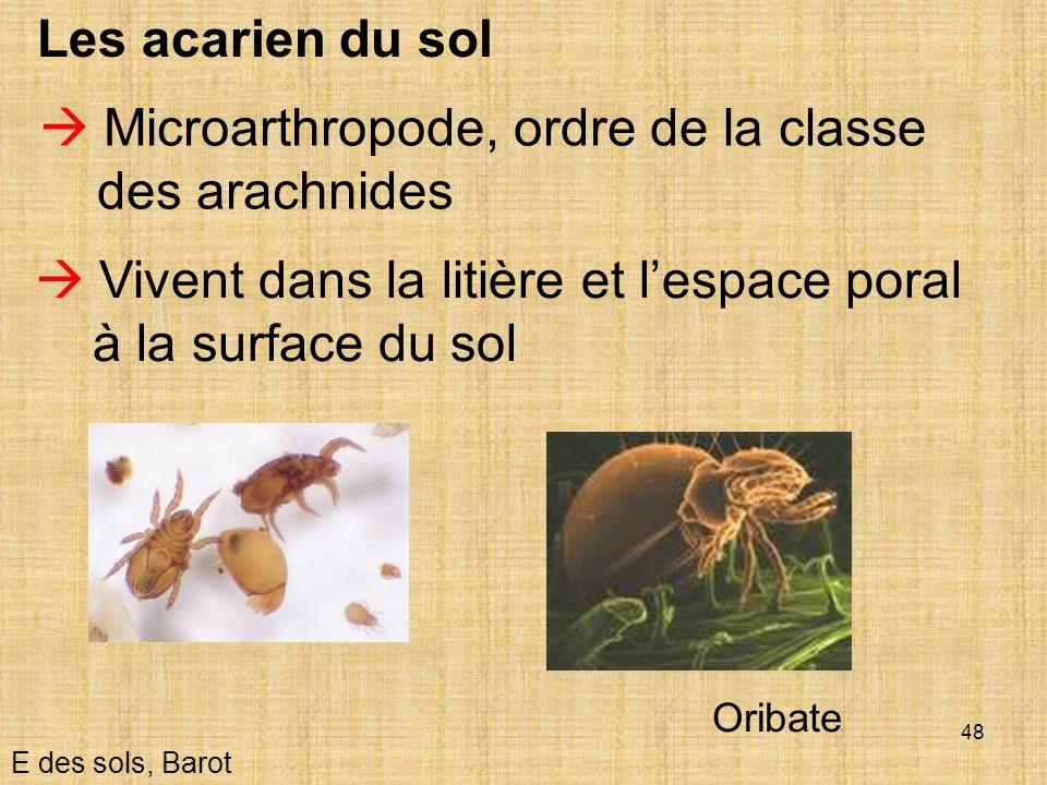 48 Les acarien du sol E des sols, Barot Microarthropode, ordre de la classe des arachnides Vivent dans la litière et lespace poral à la surface du sol
