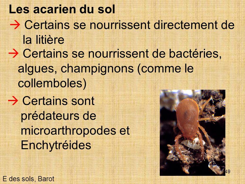 49 Les acarien du sol E des sols, Barot Certains se nourrissent directement de la litière Certains se nourrissent de bactéries, algues, champignons (c
