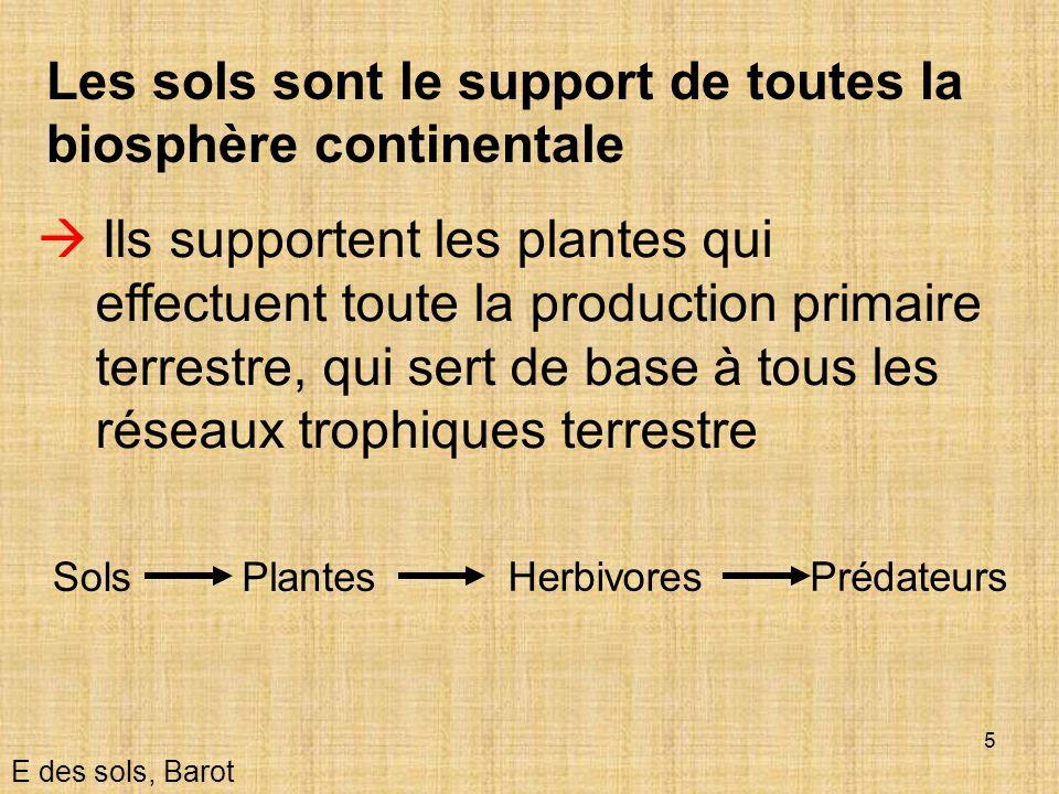5 Les sols sont le support de toutes la biosphère continentale Ils supportent les plantes qui effectuent toute la production primaire terrestre, qui s