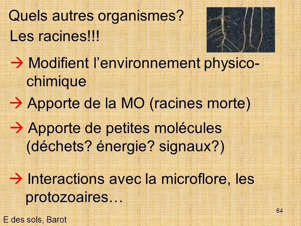 64 E des sols, Barot Quels autres organismes? Les racines!!! Modifient lenvironnement physico- chimique Apporte de la MO (racines morte) Apporte de pe