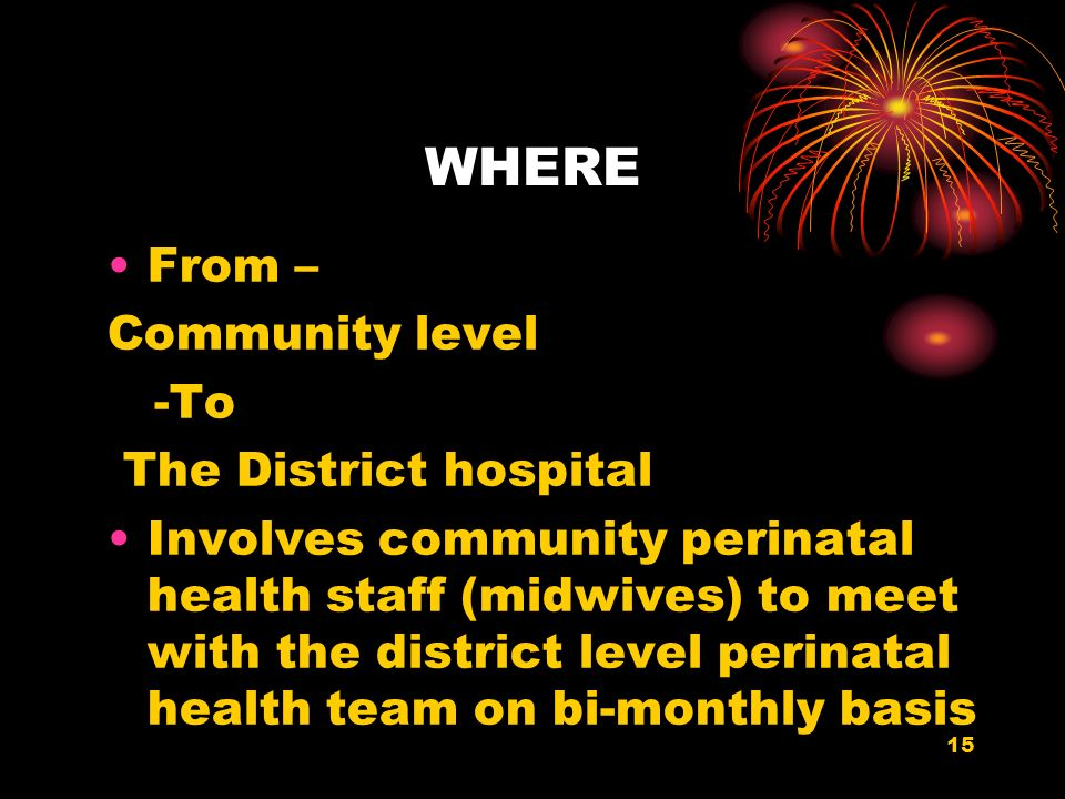 15 WHERE From – Community level -To The District hospital Involves community perinatal health staff (midwives) to meet with the district level perinatal health team on bi-monthly basis