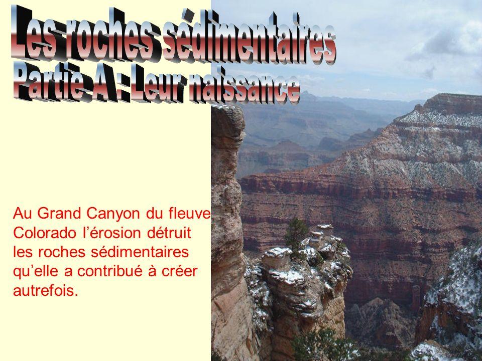 La météorisation Les roches se dégradent au contact de latmosphère (les gaz), de lhydrosphère (leau) et de la biosphère (la vie).