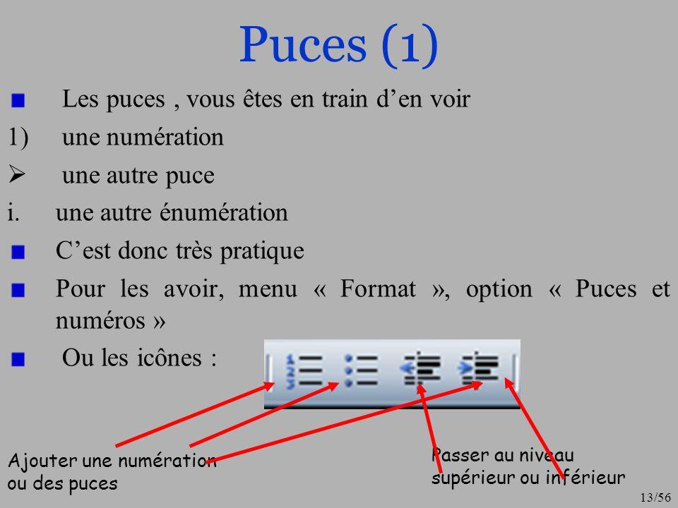 14/56 Puces (2) On peut moduler lenchaînement des puces et numéros Cliquer sur un des style puis le bouton « personnaliser » Nous obtenons alors