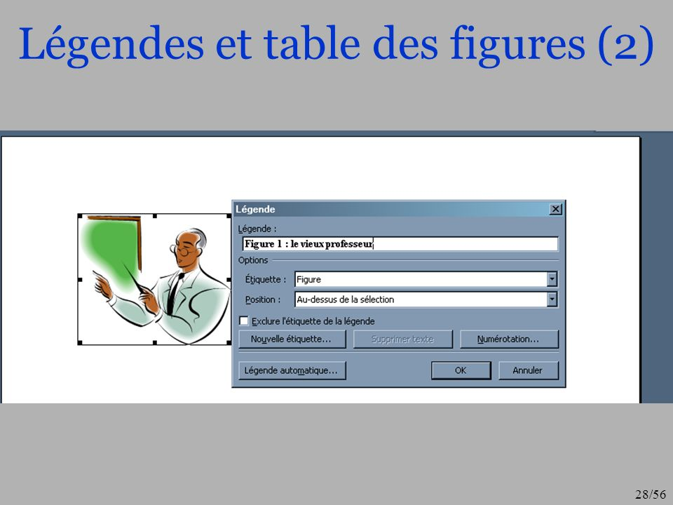 29/56 Légendes et table des figures (3)