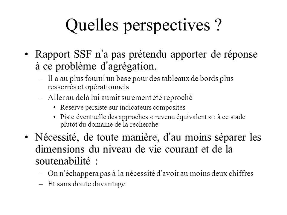 Quelles perspectives ? Rapport SSF n a pas prétendu apporter de réponse à ce problème d agrégation. –Il a au plus fourni un base pour des tableaux de