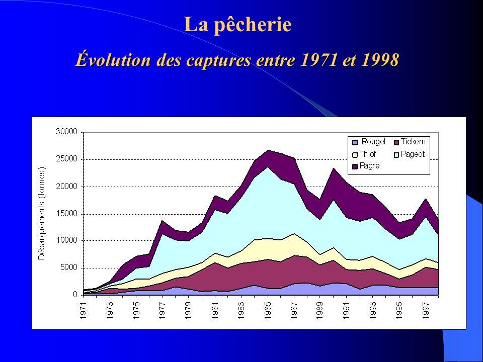 Évolution des captures entre 1971 et 1998 La pêcherie Évolution des captures entre 1971 et 1998