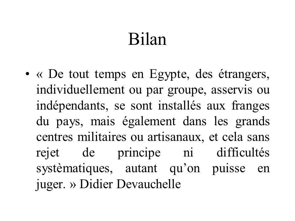 Bilan « De tout temps en Egypte, des étrangers, individuellement ou par groupe, asservis ou indépendants, se sont installés aux franges du pays, mais