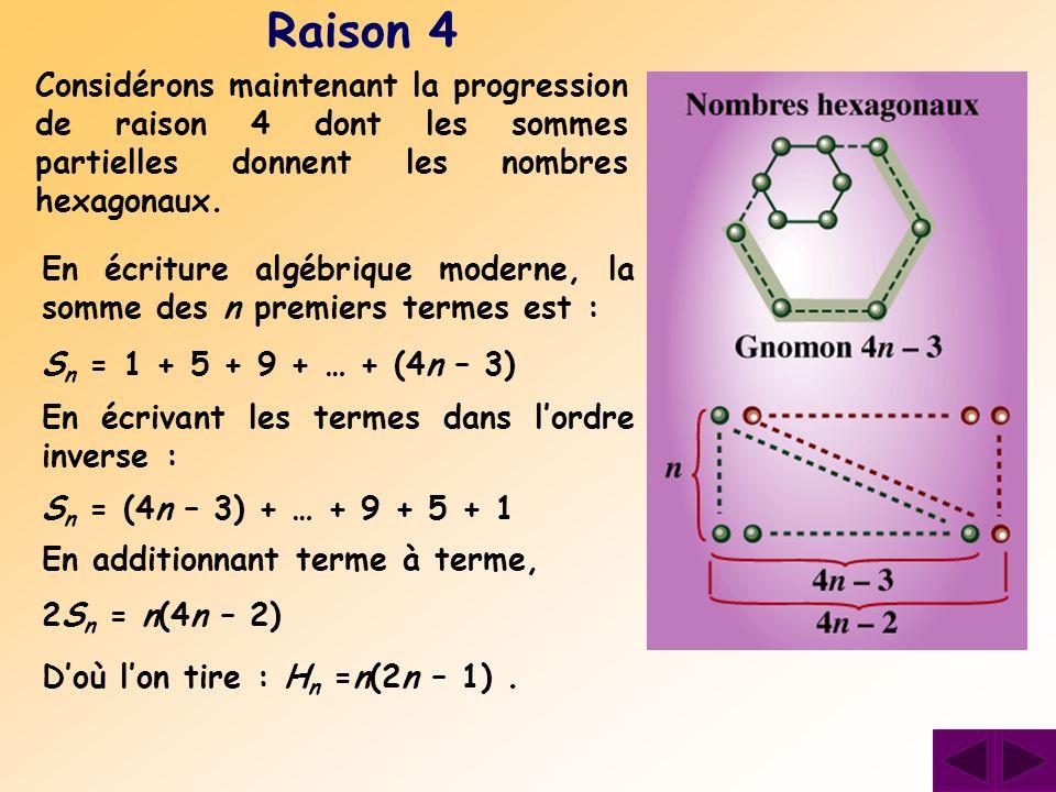 Raison 4 Considérons maintenant la progression de raison 4 dont les sommes partielles donnent les nombres hexagonaux. En écriture algébrique moderne,