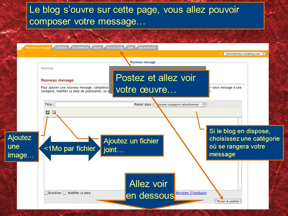 Le blog souvre sur cette page, vous allez pouvoir composer votre message… Si le blog en dispose, choisissez une catégorie où se rangera votre message Ajoutez une image… Ajoutez un fichier joint… <1Mo par fichier Postez et allez voir votre œuvre… Allez voir en dessous