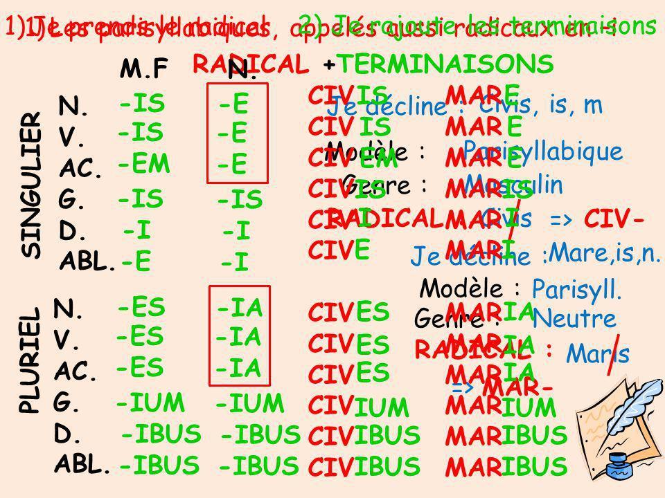 1)Les parisyllabiques, appelés aussi radicaux en –i N.